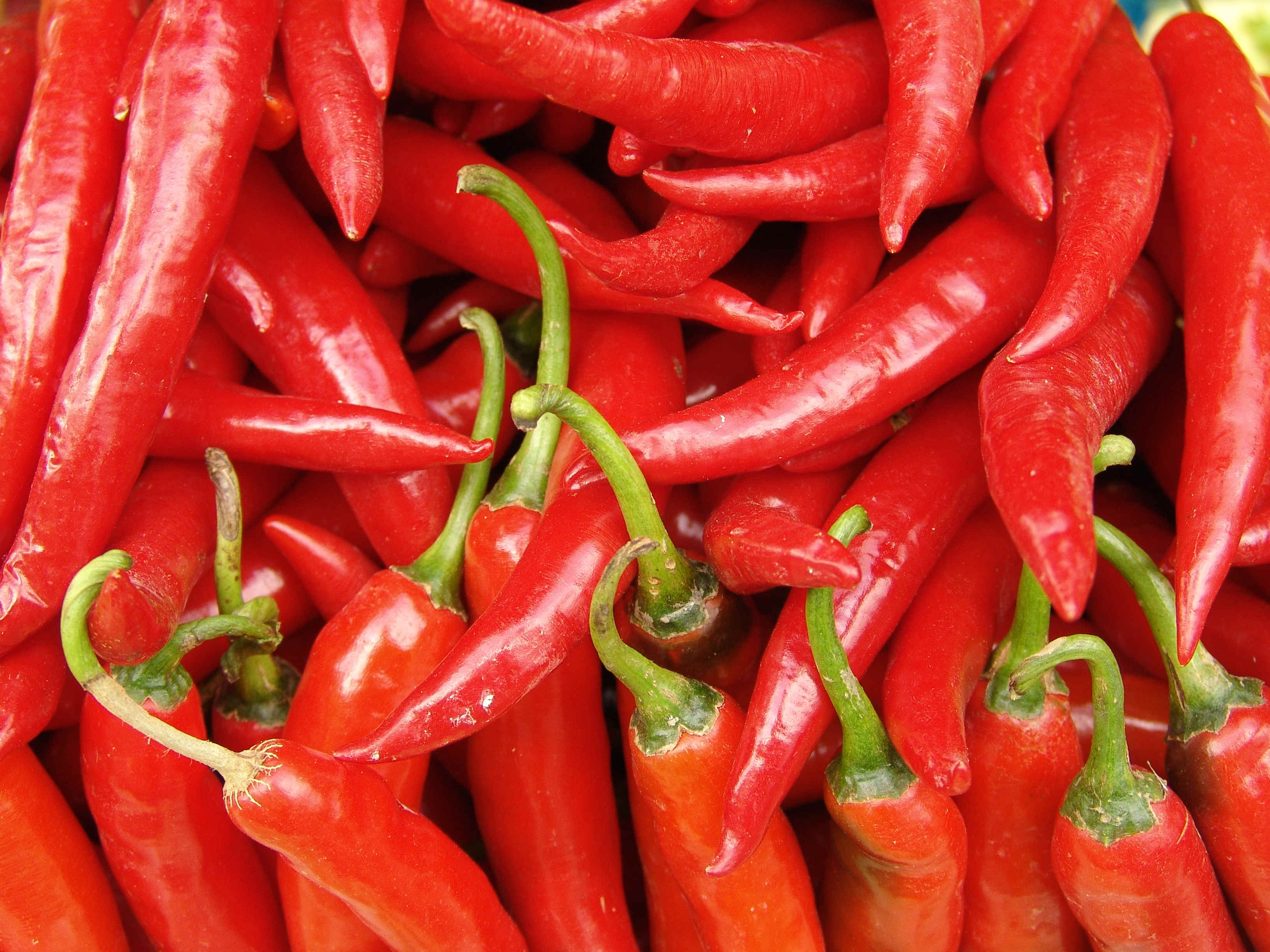 The pros and cons of eating chilli on the body - Ping Ming ...